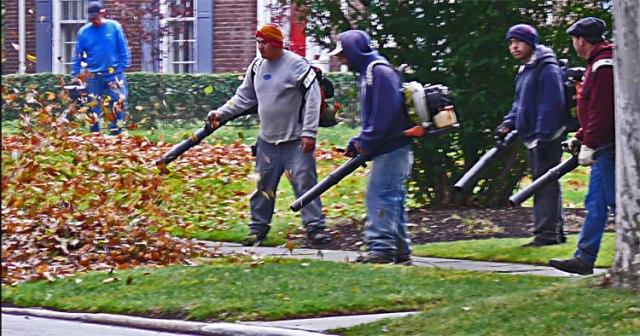 leaf-blowers