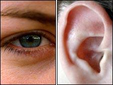 eye-ear
