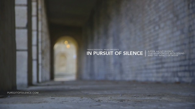 inpursuit of silence.jpg